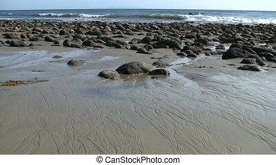 California Tide Pools - California tide pools.