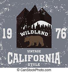 california vintage style