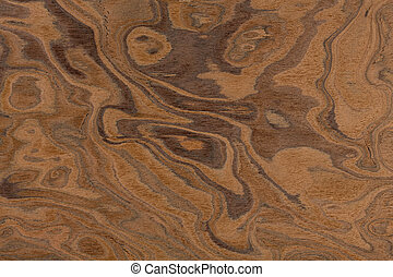 Californian walnut burl design texture. Natural background closeup. Extremely high resolution photo.