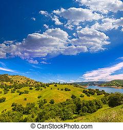californie, prés, colline, et, lac, dans, a, ciel bleu, printemps