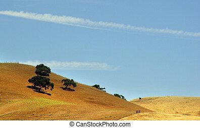 californien, bakkerne
