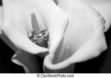 calla, anelli, matrimonio