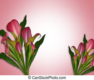 calla lelies, achtergrond, of, grens