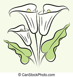 Calla lily color - Background with color calla lily. eps10