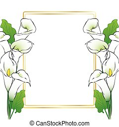 Calla lily flowers card - Card background template with...