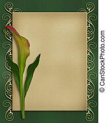 Image and illustration composition of single pink calla lily on textured background for wedding, birthday, party invitation.