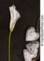 Calla lily with wooden hearts decoration on dark background, top view