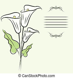 Callas background - Greating card with callas flowers. eps10