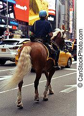 calle, ciudad, patrullar, policía, caballo, retrato, montado