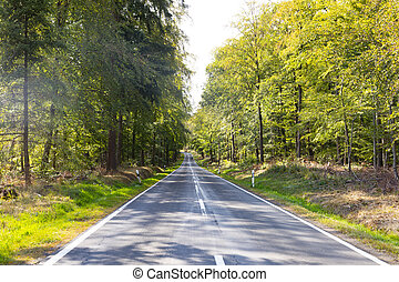 calle, escénico, área, wisper, hesse, paisaje, viejo, tradicional, valle, bosques