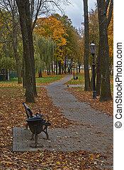 callejón, en, otoño, park.