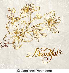 calligrafia, ciliegia, blossom.