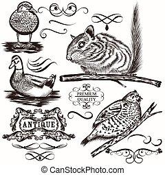 calligrap, conjunto, animales, vector