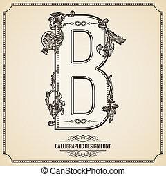 Calligraphic Design Font.  Letter B