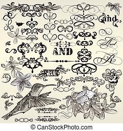 calligraphic, rocznik wina, komplet, wektor