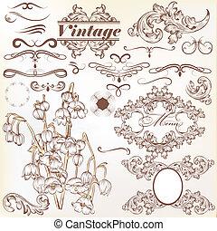 calligraphic, vendange, ensemble, vecteur