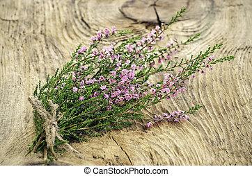 calluna, heather), (common, oberfläche, vulgaris, hölzern, ...
