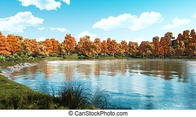 Calm autumn day on a shore of scenic forest pond - Calm...