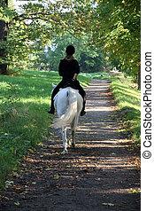 Calm backriding - Riding on a sunny road