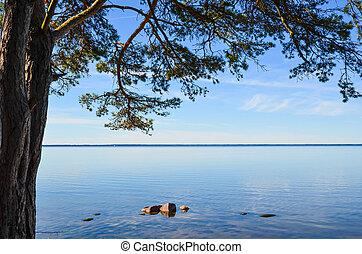 Calm coastal view - View over the coast of the Baltic sea...