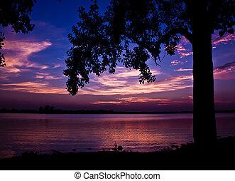 Calm Evening - silhouette of tree in setting sun