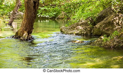 Calm flow of the river between rocks and trees