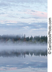 Calm foggy lake scape summer night