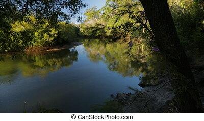 Calm Forest River, Qld Island, Australia