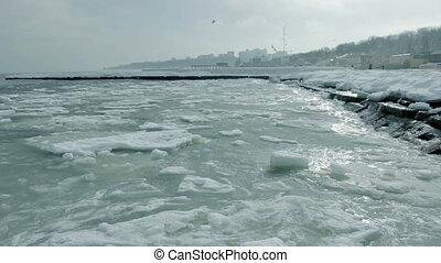 Calm ice sea with birds in sky