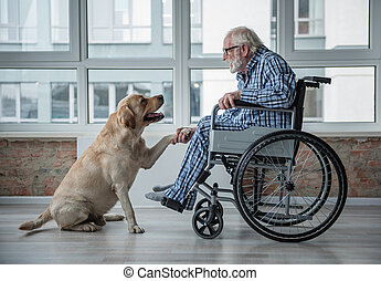 Calm ill senior male spending time with pooch - Peaceful old...