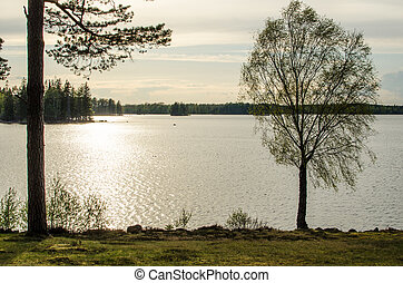View over a calm lake in back light at springtime. From the province Smaland in Sweden.