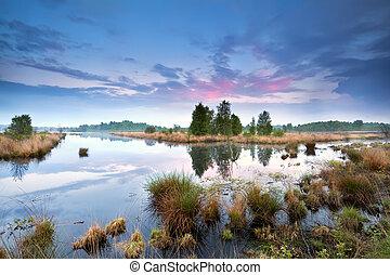 calm misty sunset over swamp in Drenthe, Netherlands