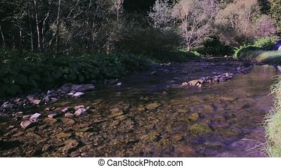 calm mountain stream and campsite with tents on a green...