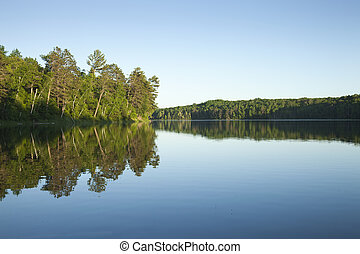 Calm northern Minnesota lake with pine trees at sunset on a clear day