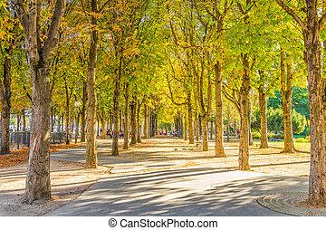 Calm park near the Champs Elysess, Paris, France