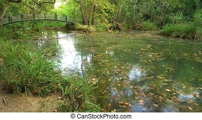 Calm pond with bridge - Calm tranquile scene with pond with...