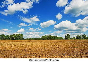 Calm rural spring landscape