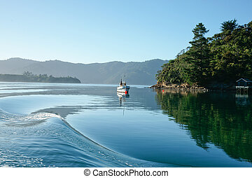 Picton Harbour in beautiful Marlborough Sounds, new Zealand's calm water are rippled by passing boat.