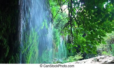 Calm waterfall in forest - Beauty waterfall in the green...