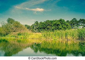 Calm waters at a idyllic lake