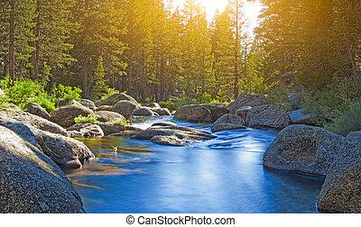 calma, e, bello, acqua, flussi, di, yosemite, nazionale,...