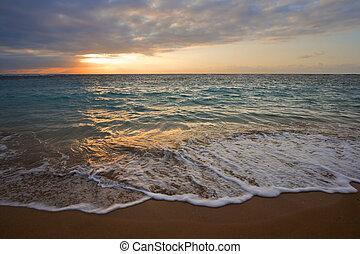 calma, océano, durante, tropical, salida del sol