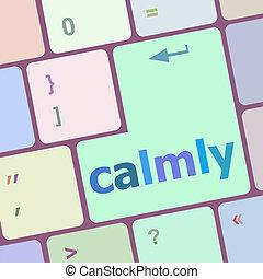 calmamente, computer, bottone, chiave, tastiera