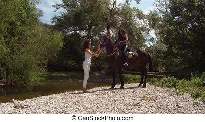 Calming a horse
