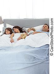 calmo, junto, família, dormir