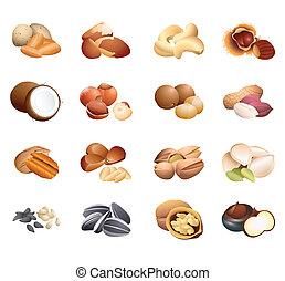 caloria, tavola, noci, e, semi