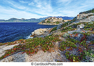 Calvi Citadel seen from Rocks of Revellata Peninsula - Calvi...