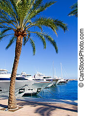 Calvia Puerto Portals Nous luxury yachts in Mallorca Balearic island from Spain