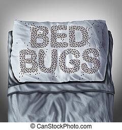 cama, bichos, en, almohada