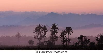 camadas, de, nebuloso, colinas, em, amanhecer